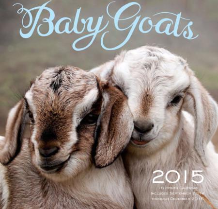 "<p style=""text-align: center;"">Baby Goats 2015 Calendar"